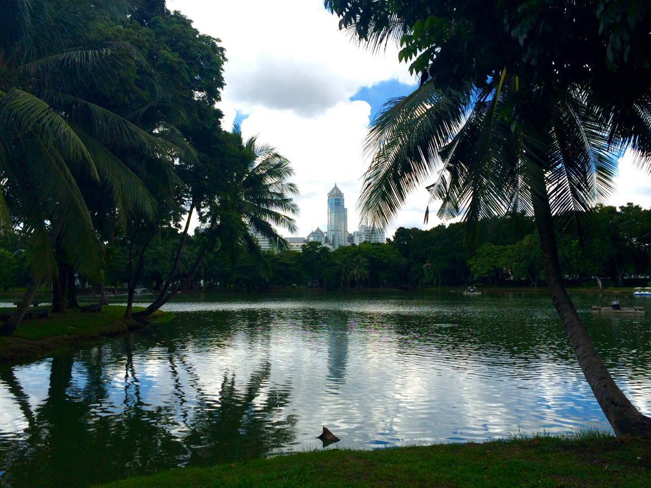 Lumphini Park Bangkok, Thailand