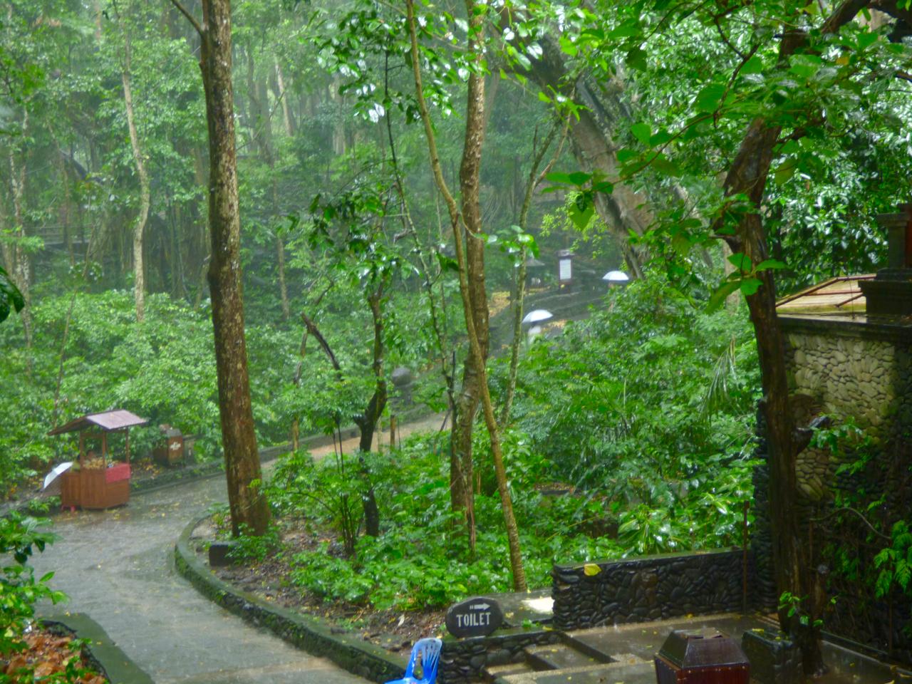 Sacred Monkey Forest Ubud, Indonesia