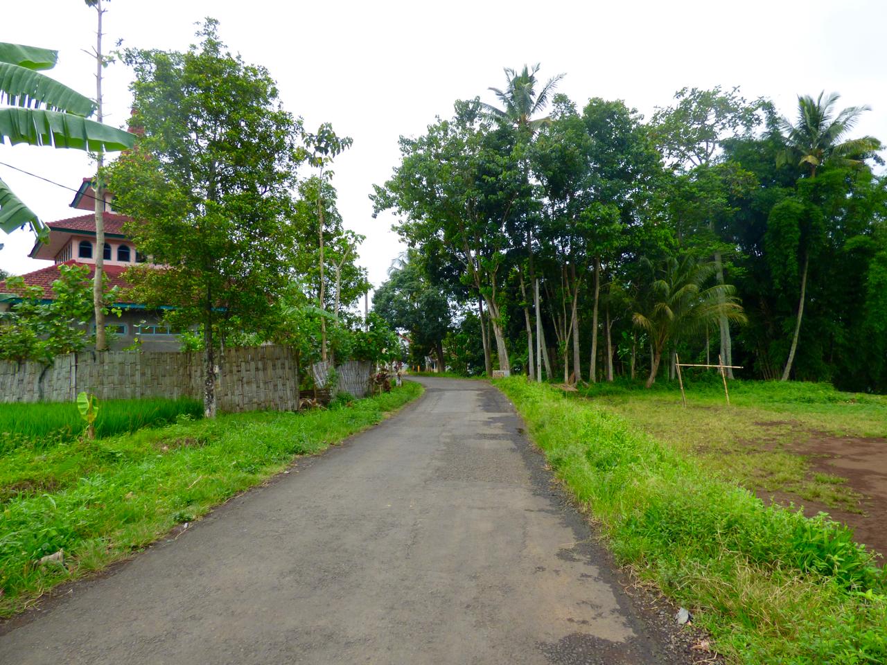 Rural Java, Indonesia