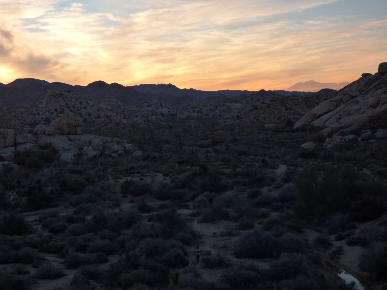 Barker Dam Sunset Joshua Tree National Park
