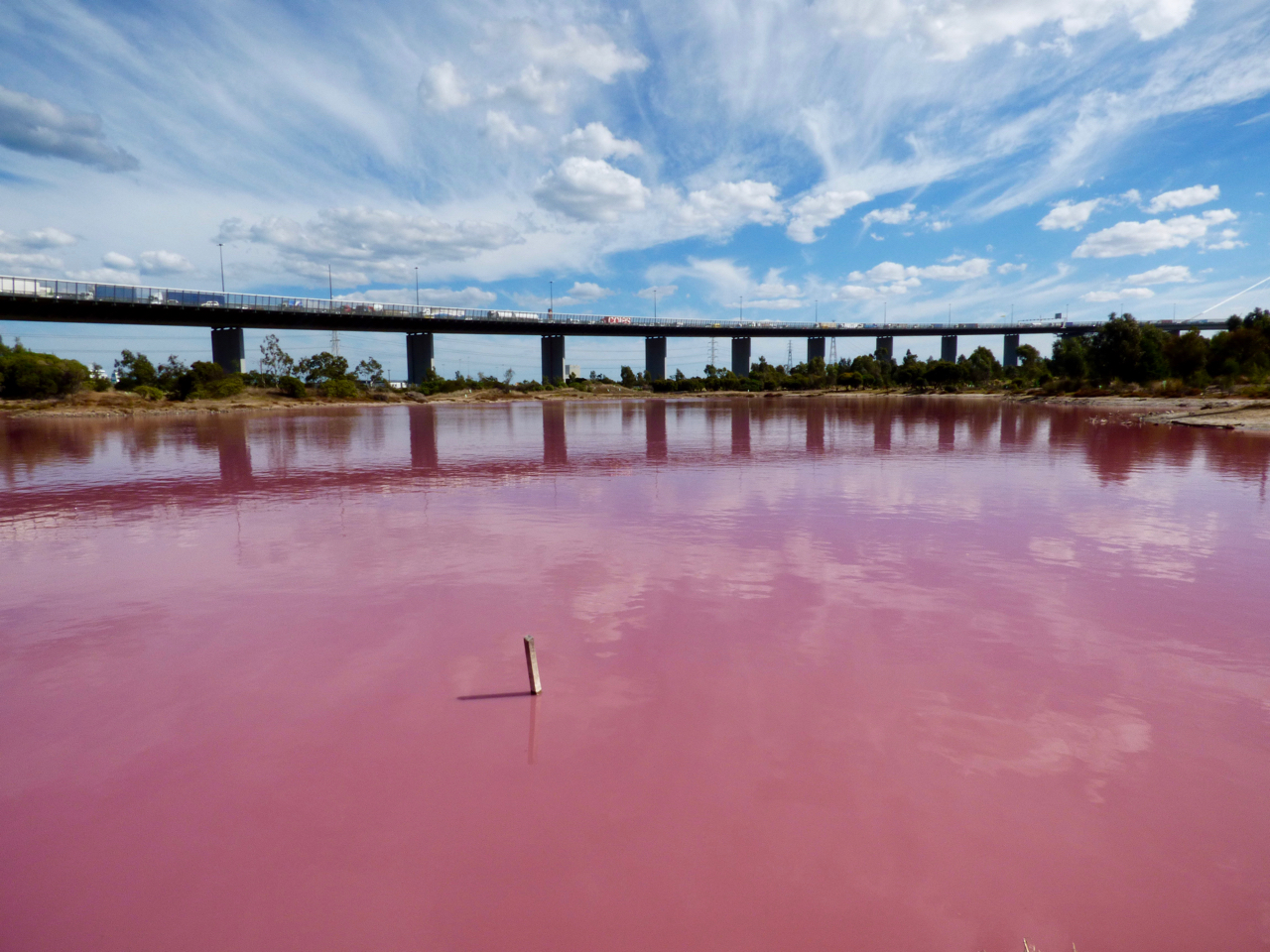 Pink lake in Melbourne