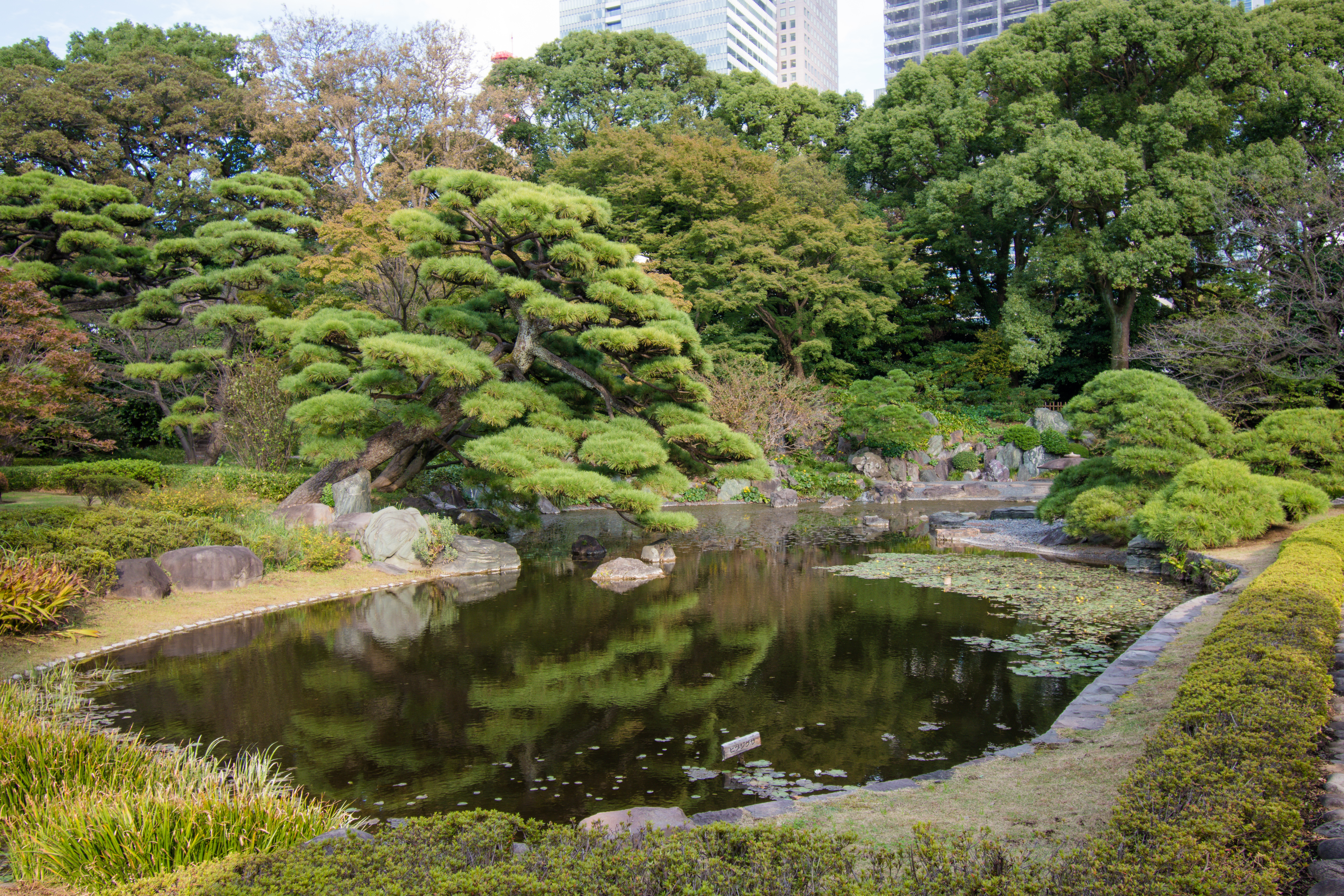 Imperial Palace East Grounds Tokyo, Japan best photo spot Tokyo